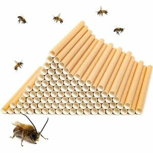 "Juvale 100 Pack 6"" Mason Bees Nesting Cardboard Tubes for Bee Houses"