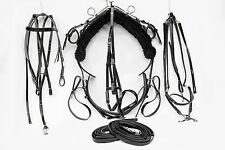 Black Tie Down Trotting Harness - Full Size