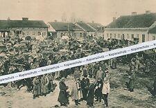 Svan Hedin  - Entdecker in Lodzije -  Erster Weltkrieg -  um 1915 - K 28-12
