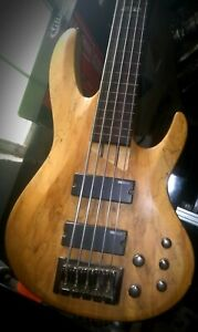 ESP Ltd Fretless 5-string electric bass /quilted Maple (Maybe Spalted?)...