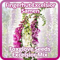 "Fingerhut ""Excelsior"" bunte Mischung - ca. 300 Samen / Pack - Digitalis purpurea"
