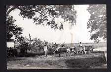 111992 AK Port-au-Prince 1939 Haiti Bauern Ochsen Plantage Bananen Stauden