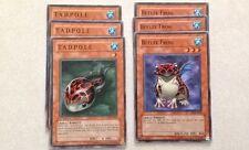 6cd YuGiOh Set w/ T.A.D.P.O.L.E CRV-EN027 & Beelze Frog SOI-EN026 (3 cards each)
