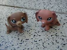 Littlest Pet Shop - LPS - 2x Hund Dackel Dog Dachshund -  rar/ rare / selten