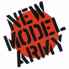 "NEW MODEL ARMY albums 33rpm Punk records 12"" LP vinyls $20 each album"
