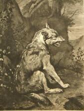 Pieter Potter después de Gustave Greux; 'Wolf' ;' un Loup 'grabado 1888