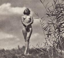 Nu - 1933 - Héliogravure - par Kalman Szöllösy