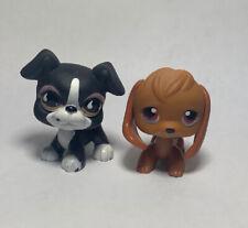Littlest Pet Shop #216 Beagle & #826 Boxer Dog