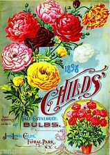 1898 Childs Bulbs Vintage Flowers Seed Packet Catalogue Advertisement Poster