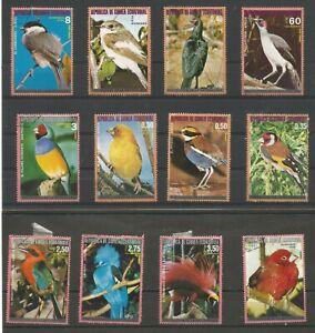 Equatorial Guinea Birds