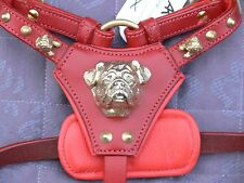 NEW LEATHER- PUG/JUG- DOG HARNESS IN 3-COLOURS WITH 3D BRASS HEAD