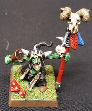 Warhammer PRESENTA:  Goblin Sciamano - Grot - WarHammer Fantasy