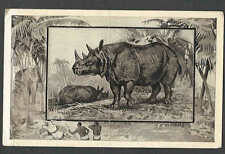 Ca 1909 PPC* FROM TEDDY ROOSEVELT AFRICAN EXHIBITION SERIES RHINO MINT SEE INFO