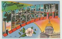 Unused Postcard Large Letter Greetings from Mississippi MS