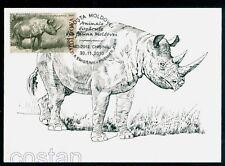 2010 Stephanorhinus/rhinoceros,Prehistoric/extincted animal,Moldova,FDC Maxicard