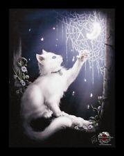 Pequeño Lienzo de pared con gato - Nieve KITTEN - LINDA M. Jones Fantasy