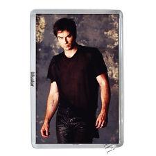 Ian Somerhalder / Damon Salvatore -  Vampire Diaries - Fotomagnet 5mm Acryl [M5]