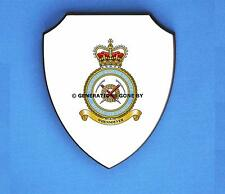 ROYAL AIR FORCE MOUNTAIN RESCUE SERVICE WALL SHIELD (FULL COLOUR)