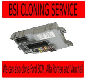 Fiat BSI Clone Service