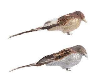 1 Vögelchen Glanz mit Clip 7.5x7.5x28 CM Natural Taggle Dekorationen Weihnachten