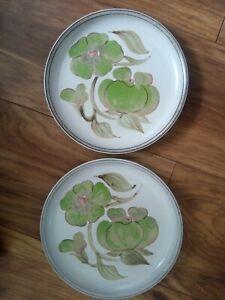 "Denby Troubadour 8"" Plates X2 Vgc"
