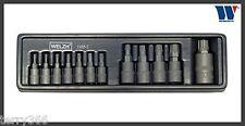 Welzh Werkzeug  Impact - TORX PLUS SOCKET SET 12pc 8IP-60IP PROFESSIONAL QUALITY