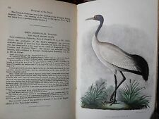 1881 THE NATURAL HISTORY OF THE CRANES - BLYTH & TEGETMEIER  COLOUR PLATES BIRDS
