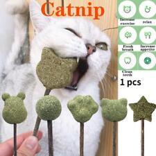 Catnip Lollipop Funny Cat Stick Teeth Stick Catnip Ball Toy R6W7