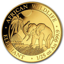 2017 Somalia 1/25 oz Gold African Elephant BU - SKU #102918