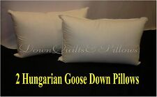 2 Standard Pillows Brand New- 95% White Hungarian Goose Down - European Quality