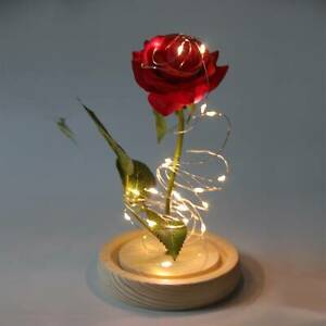 Eternal Rose LED Light Beauty And The Beast In Glass Dome Valentines Love Gift