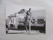 1960s B/W Photograph. Man Riding a Dromedary/ Camel. Las Palmas, Gran Canaria