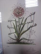 salvador dali numb signed pencil litho Desert Cactus surealistic flowers