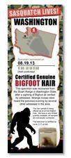BIGFOOT HAIR SAMPLE - Washington State Park Rare Unique Gift Boy Child Man Cave
