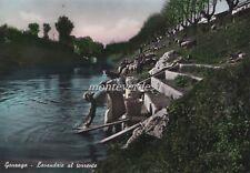 GONZAGA (Mantova) - Lavandaie al  torrente 1957