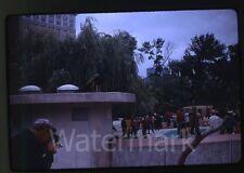 1968 kodachrome  Photo slide Man with movie camera