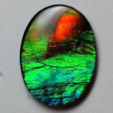 Ammolite Gemstone A 16x12 by Mont Blue