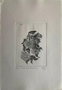 """Stefi Longo acquaforte Frammento d'Autunno  50x35 numerata 1972 da """"le stagioni"""""""
