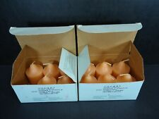 Party Lite Ginger Pumpkin Scented Votive Candles Box Of 11 V06401