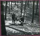 WW2 German Soldiers at Wooded Rifle Range 8x7 Original Photo