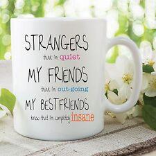 Funny Novelty Mug Best Friends Strangers Insane Office Work Cup Gift WSDMUG408