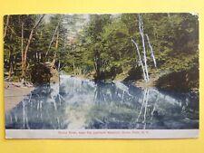 CPA Old Postcard USA NEW YORK BRONX RIVER, near the LORILLARD MANSION Bronx Park