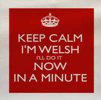 Keep Calm welsh Now Minute- Printed Fabric Panel Make A Cushion Upholstery Craft