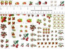 Dollhouse Miniature Shabby Chic Decals 1:12 Scale Strawberry Kitchen