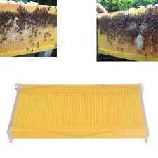 1 pc Bee Auto Move Down Raw Honey Beekeeping Beehive Hive Frames Harvesting NEW