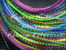 50 FEATHER HAIR EXTENSIONS BRIGHT VARIETY PACK DISCOUNTED CHEAP