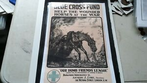WW1 print copy wounded horses at war see photos