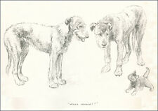 Irish Wolfhound Puppy Dogs 1932 by K F Barker - LARGE New Blank Note Cards