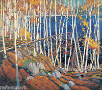 Handmade Oil Painting repro  Tom Thomson In the Northland