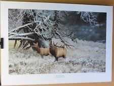 """""""Morning Sage Elk"""" Print by Christopher B. Walden, Signed & Numbered"""